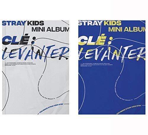 Standard Go Cartes photos suppl/émentaires A ver Album Avantage de pr/écommande Stray Kids Poster pli/é Vol.1