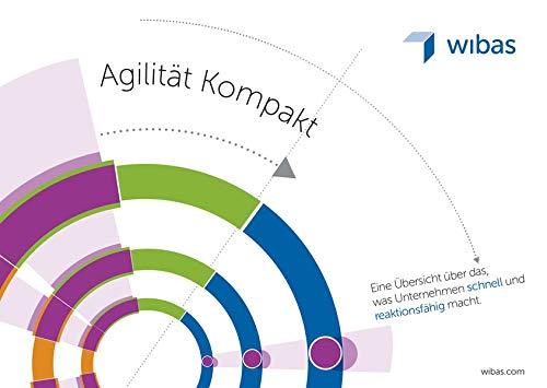 Agilität Kompakt: Eine Übersicht über das was Unternehmen schnell und reaktionsfähig macht