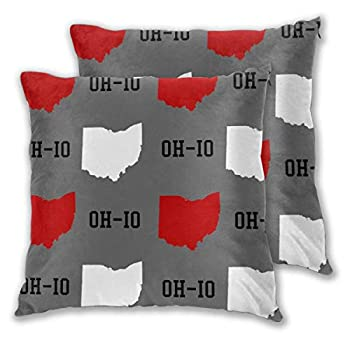 FUNINDIY Ohio State Gray Square Throw Pillow Covers Set of 2 Decorative Cushion Cases Pillowcases Soft and Cozy for Sofa Bedroom Car 18x18 inches