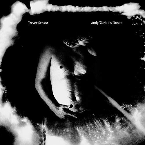 Andy Warhols Dream (Color Vinyl) [Vinilo]