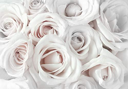 decomonkey Fototapete Rose 350x256 cm Design Tapete Fototapeten Tapeten Wandtapete moderne Wand Schlafzimmer Wohnzimmer Blumen Pflanzen Natur
