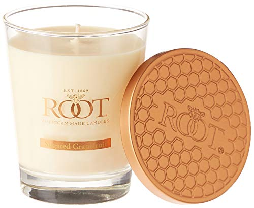 Root Candles Honeycomb Veriglass Scented Beeswax Blend Candle, Large, Sugared Grapefruit