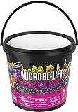 MICROBE-LIFT Activa el Crecimiento orgánico de Coral de Salt 10Kg