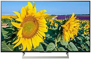 Sony KD-49XF8096 123 cm (telewizor, 400 Hz)