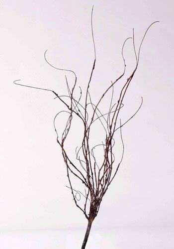 kunstpflanzen-discount.com Dekozweig mit 16 Stängel, Höhe ca. 50cm - Künstlicher Dekozweig für Arrangements