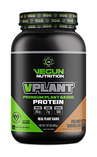 VPLANT Vegan Protein Powder – Plant Based Lean Muscle Building Shake | Best Pea + Sacha Inchi Protein – Best Lean Meal Shake for Men & Women, Nutritional Sports Drinks, Creamy Chocolate (25 Servings)