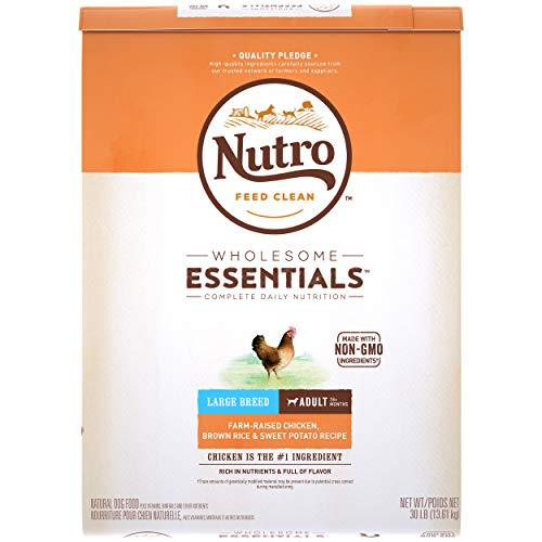 NUTRO Adult Dry Dog Food