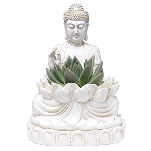 Bella Haus Design Buddha Planter – 9.5' Tall Polyresin - Zen Plant Pot Holder for Succulent, Flower, Cactus - Garden Lotus Statue Indoor or Outdoor Decor