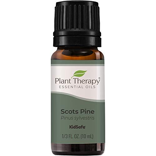 Plant Therapy Pine Essential Oil. 100% Pure, Undiluted, Therapeutic Grade. 10 Ml (1/3 Oz).