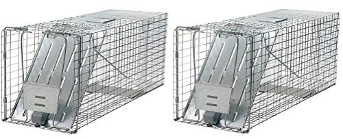 Havahart 1079 Large 1-Door Humane Animal Trap for Raccoons, Cats, Groundhogs, Opossums 2 Pack