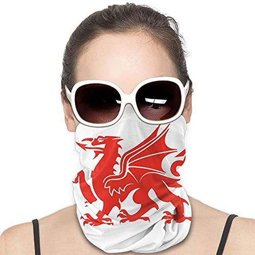 Nicegift Bandana de Harry Potter con protección solar para el verano, al aire libre, bufanda de seda para la cara, pasamontañas, 10 x 50 cm