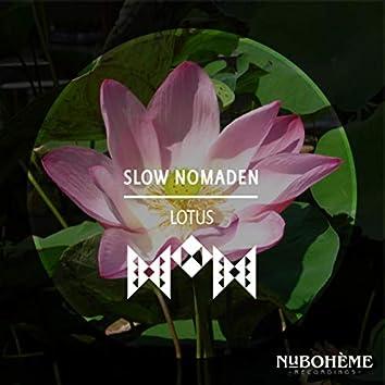 Lotus (Radio Edit)