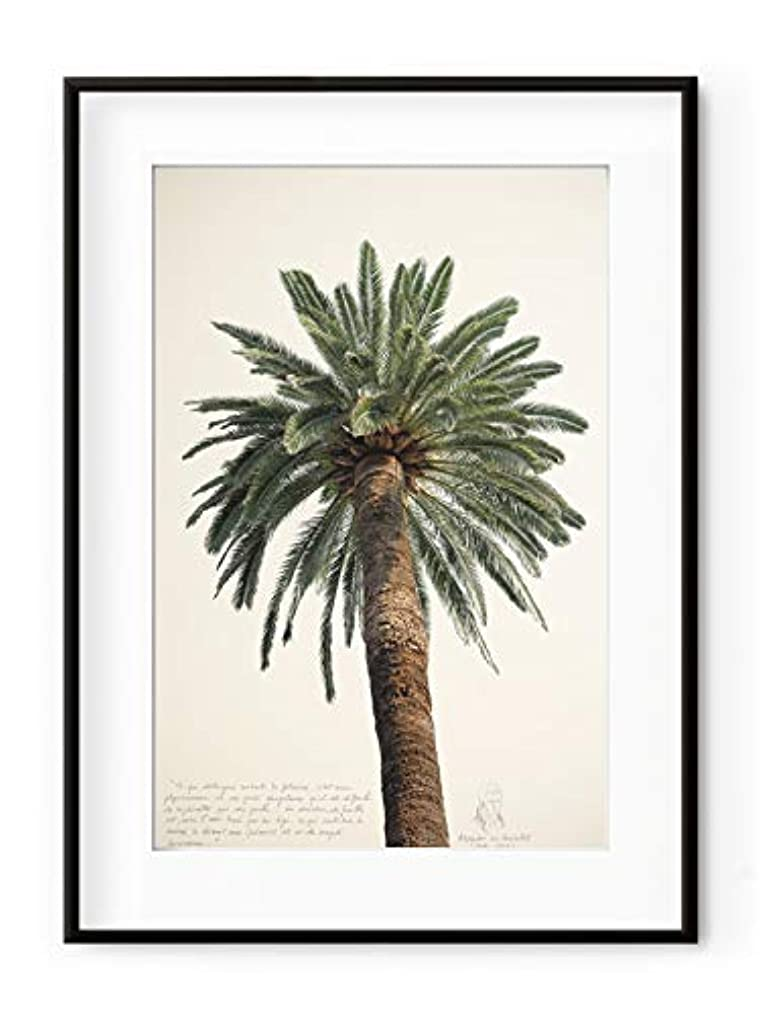 Large Palm Tree, White Varnished Wood Frame, with Mount, Multicolored, 70x100