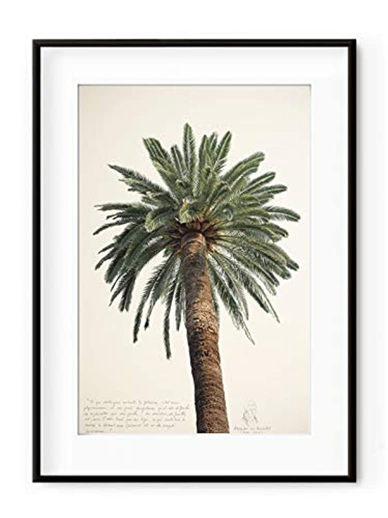 Large Palm Tree, White Varnished Wood Frame, with Mount, Multicolored, 30x40