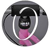 Puky LR 1Br Laufrad Standard mit Luft-Bereifung und Bremse rot - 8