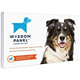 Wisdom Panel 3.0 Canine DNA Test - Dog DNA Test Kit for Breed