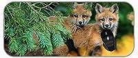 XXL大型マウスパッド赤ちゃん動物野生動物アニマルフォックス長い拡張マウスパッドデスクパッド