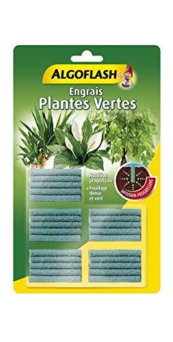 ALGOFLASH Engrais Bâtonnets Plantes Vertes, Action jusqu'à 3 mois, 25 bâtonnets, ABAPAVA