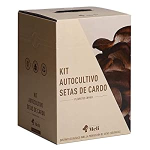 SETAS MELI | Kit Autocultivo Setas Ecologicas de Cardo | Para cultivar en casa | Crece en 10 dias | Kit perfecto para regalar | Hecho en España | Kit ECOLOGICO Y RECICLABLE