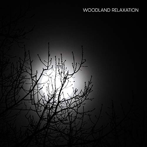Woodland Relaxation - 15 Ambient Melodies with Sounds of Nature such as Birds, Crickets and Water, Healing Therapy, Soothig Noise, Feel So Good, Positive Energy