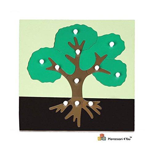 Montessori Puzzle Botánico: Árbol