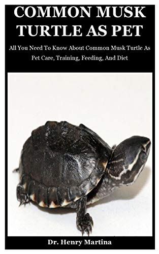 Common Musk Turtle As Pet: All You Need To Know About Common Musk Turtle As Pet Care, Training, Feeding, And Diet