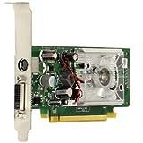 HP 445743-001 NVIDIA GEFORCE 8440 GS PCI-E (X16) Graphics Card - Professional