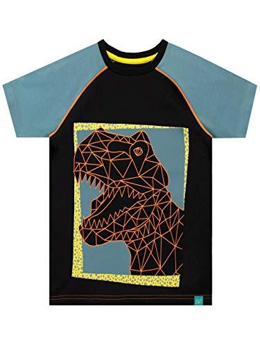 Harry Bear Jungen Dinosaurier T-Shirt Schwarz 128
