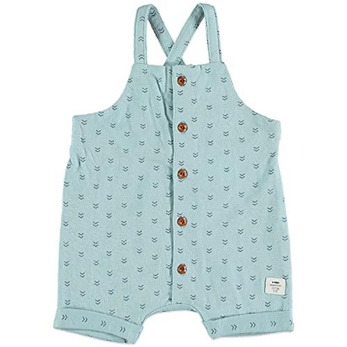 COTTON FISH - Peto para Bebé. Colección Essential. Estampados y Colores Variados. 100% Algodón. (Estandar, Slubby Blue, 12 Meses)