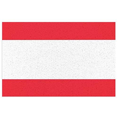 Felpudo de bandera de Austria con respaldo de PVC resistente para uso en interiores y exteriores