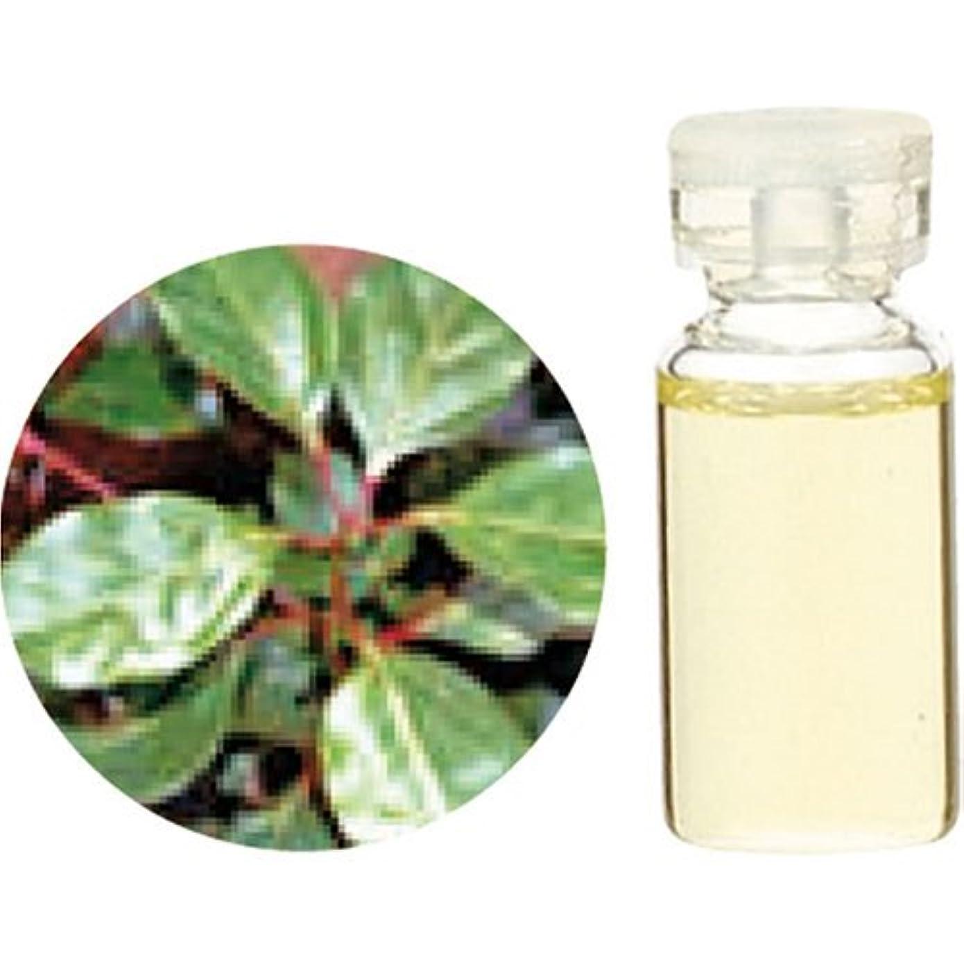 上回る野望標準HerbalLife ラベンサラ 10ml