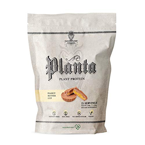 Ambrosia Planta - Premium Organic Plant-Based Protein | Vegan & Keto Friendly | Gourmet Flavors with No Bloating or Stomach Upset | Gluten & Soy Free | No Added Sugar | 25 Servings | Peanut Butter Cup