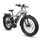 DERUIZ Bicicleta Eléctrica Plegable 20'/26'*4.0 E-Bike MTB Pedal Assist, Batería de Litio 48V 13Ah, Bicicleta Eléctrica para Adultos, Shimano 7 Velocidades, Bici eléctricas de Off-Road Fat