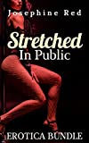 Stretched in Public Erotica Bundle: Dirty and Explicit Sex Stories for Adults
