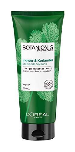 Botanicals Stärkender und entwirrender Conditioner ohne Silikone, Sulfate und Parabene, Für geschwächtes Haar, Vegane Naturkosmetik, Ingwer & Koriander Spülung, 1 x 200 ml