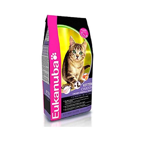 Eukanuba Kitten Chicken Formula Dry Cat Food