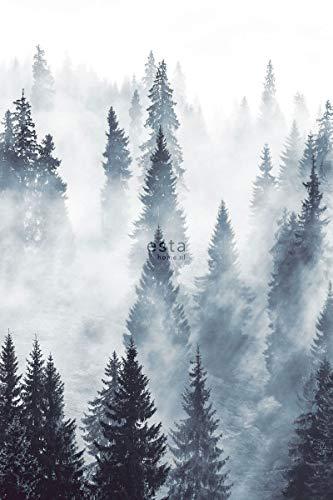 fotobehang mistig bos groen - 158909 - van ESTAhome