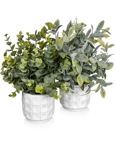 Small Artificial Potted Plants Set of 2 - Small Fake Plants for Bathroom Decor - Modern Farmhouse Plant Decor - Small Artificial Plants for Home Decor Indoor - Cute Faux Plant White Pot