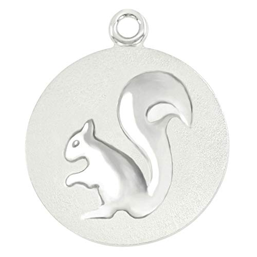 Divoti Personalized Fun & Playful Pet ID Tags for Dogs & Cats - Deep Custom Laser Engraved Pet ID Tags Surgical Stainless-Steel Dog Tags -1' -Stainless/Squirrel -Free Engraving w/Ring Pack
