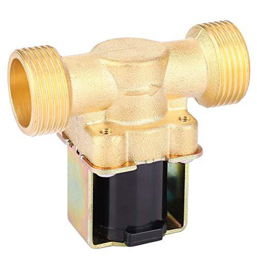 Elektrisches Magnetventil aus Messing 3/4 Zoll DC 12 V/DC 24 V/AC 220 V Magnetventil, elektrisches Luftventil normalerweise geschlossen mit Gas Wasser Diesel (AC 220 V)