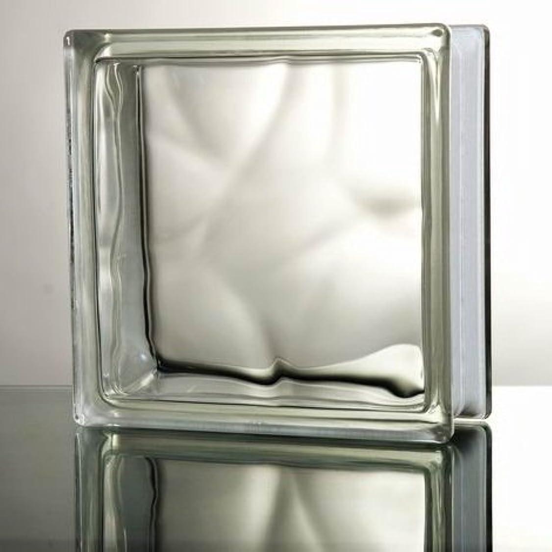 重要本当にご意見ガラスブロック 6個セット(厚み80mm クリア色雲) gb26806