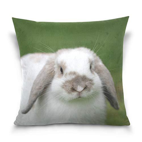 hengpai Closeup Shot Cute Rabbit Green Grass Blurred Square Pillow Cases Decorative Pillow Cover Cotton Velvet for Couch Safa
