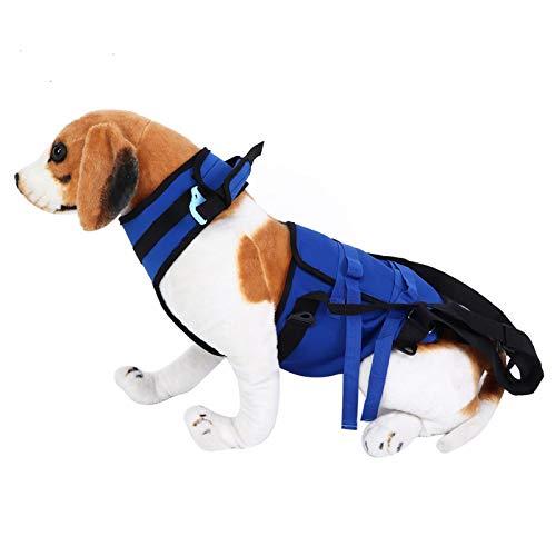 Tomantery Arnés de elevación de Cuerpo Completo para Mascotas, Correa para Caminar, tamaño pequeño y liviano, para Ayudar a Mascotas Mayores o discapacitadas, fácil de Ajustar(Blue, XL)
