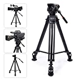 TARION TR-VT77 Camera Tripod Fluid Drag Head Tripod Full Panoramic View 360 1/4'...