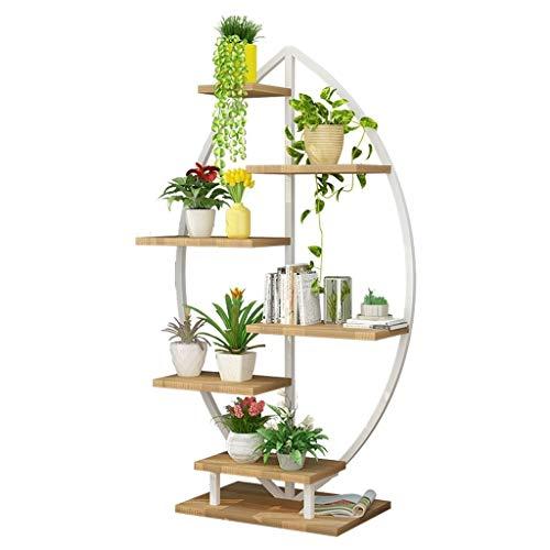 Lfixhssf Fleur Shelf Accueil Simple Multi-Couche d'affichage des Plantes Stand étagères Fleurs Pot Sol 60 × 40 × 150 cm Lfixhssf (Color : B)