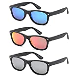 Best Gamma Ray Optics Eye Glasses - Gamma Ray Polarized Sunglasses for Men and Women Review