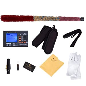 Mendini By Cecilio Eb Alto Saxophone - Instrument Case, Tuner, Mouthpiece, 10 Reeds, Pocketbook, Cloth & Gloves- MAS-L Gold Lacquer E Flat Sax (Saxofon Alto)