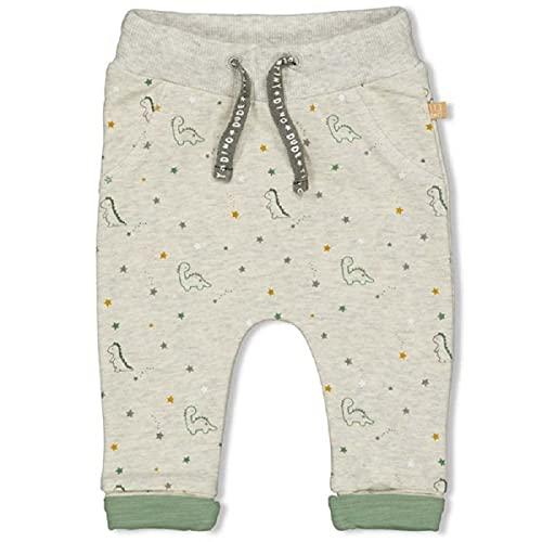 Feetje Pantalones de chándal Dinos gris 68 cm