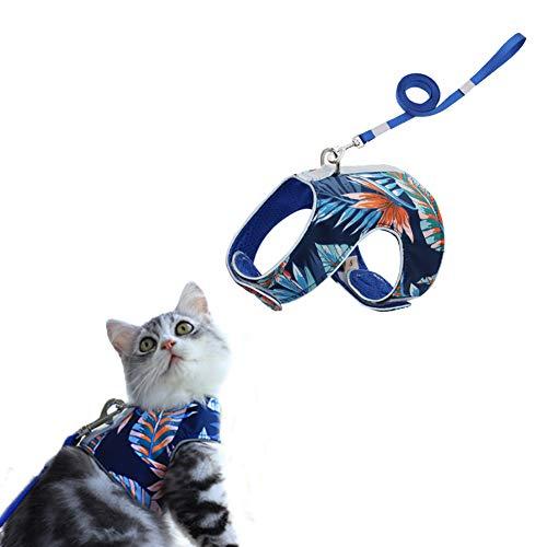 Feimax Katzengeschirr mit Leine Geschirr für Katzen, Ausbruchsicher, Verstellbar, Weiches Netzgewebe, Reflektierend Katzenweste für Klein und Mittel Katze Kätzchen (XS, Blau)