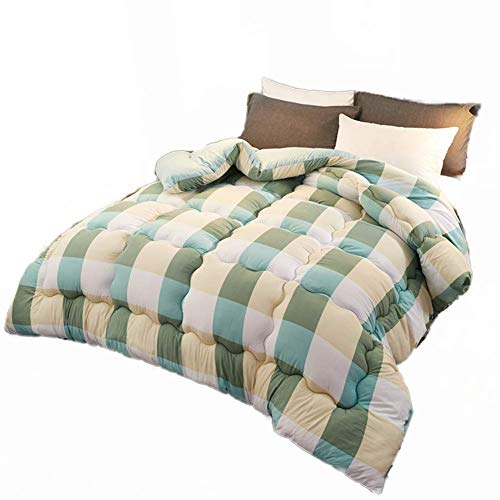 AMYZ Bed Duvet,Warm Padded Duvet,Winter Duvet,Winter Double Duvet,Anti Allergy Duvet,Microfiber,Soft and Comfortable Quilt(ColorC,200 * 230cm2.5kg)